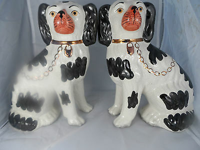 Staffordshire ware Kent ~ pair of (white and black) dogs ~ made in england