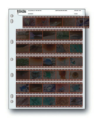 Print File Storage Sheets 35-7B25 for 35mm Film Negatives 7 Strips Pack of 25