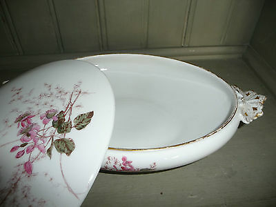 Beautiful Floral Limoges G D & Cie Oval Lidded Tureen With Flower Handle Vgc