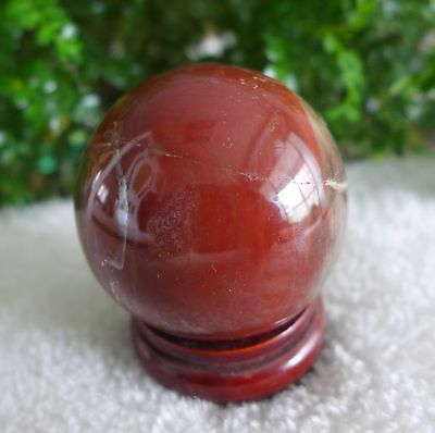 """2.44"""" Natural Polished Red Petrifild Wood fossil Sphere Ball Madagascar+stand 4#"""
