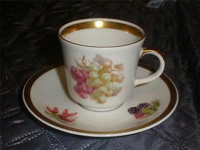 GOLDEN CROWN E & R BAVARIA GERMANY DEMI TASSE CHINA CUP & SAUCER ORCHARD PATTERN