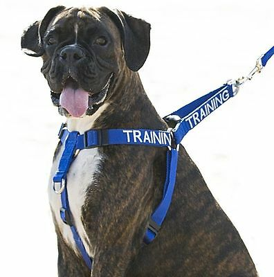TRAINING Blue Heavy Duty Non Pull Dog Harness Front Clip & Optional Lead Sets