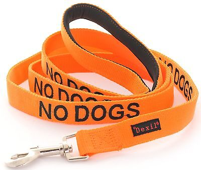 By Dexil NO DOGS Lead or Collar Orange Not Good With Other Dogs Alert Warning
