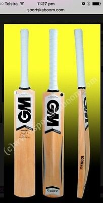 GM Icon Maestro Kashmir Willow Cricket Bat (Indoor), AU Stock Free Ship & Extras
