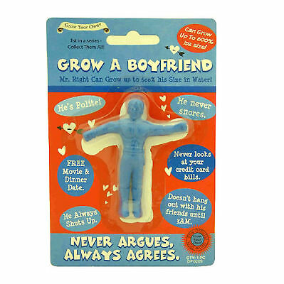 Grow Your Own Boyfriend A Joke Gift Secret Santa Adults Quick Despatch UK Sell