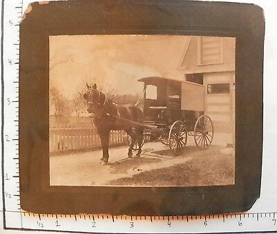 Antique Photograph; Horse Drawn Carriage New Bedford No 57 C E Chase 1808