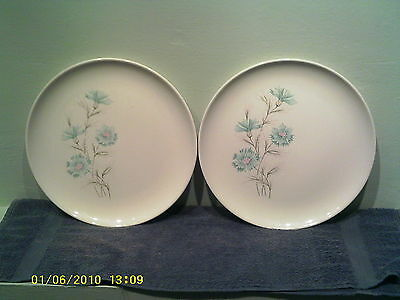 A Pair Of Taylor, Smith & Taylor Boutonniere Dinner Plates