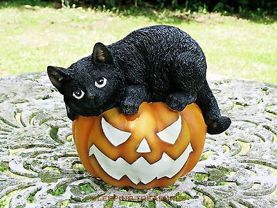 Black Cat On Pumpkin Glow In The Dark Ornament Indoor Or Outdoor, Halloween