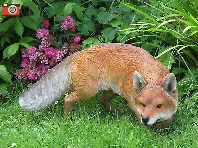 Prowling Fox,  Life Size & Stunning For Home & Garden. Ultra Real & Incredible