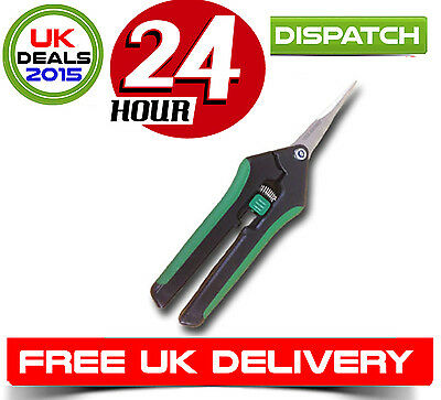 Pruning Scissors Snips High Quality Hydroponic Grow Room Tent Kits Bonsai Orchid