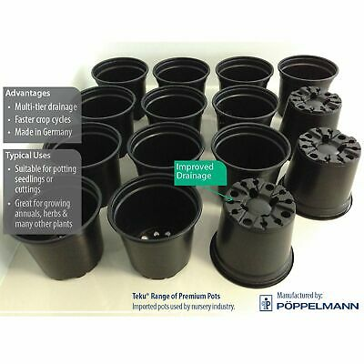 Teku Plastic Pots. 100, 120 & 130mm sizes. Potting seedlings & herb plants