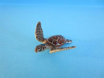 """♥ NEW LITTLE CRITTERZ MARINE """"TORTUGA"""" GREEN SEA TURTLE WITH BOX *Mint*"""