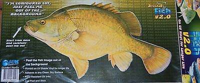 GOLDEN PERCH - Fish Sticker Boat Decal