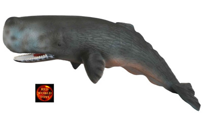 *BRAND NEW* 22cm SPERM WHALE SEALIFE MODEL by COLLECTA *FREE POSTAGE*