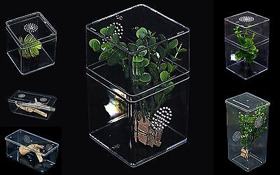 Insect Rearing Vented Boxes Great for Praying Mantis Stick Insects Spiders