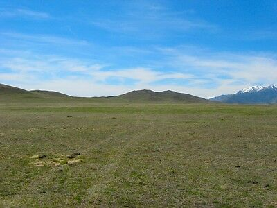 RARE 20 ACRE NEVADA RANCH POWER & 2WD ACCESS~CLOSE TO A HUGE LAKE! LOW RESERVE!