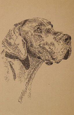 GREAT DANE DOG ART Kline Print #47 DRAWING FROM WORDS Your dogs name added free.
