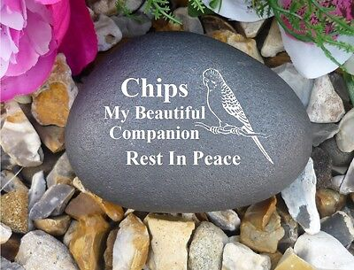 Pet Budgie Memorial Pebble - Stone Effect - Personalised - Weatherproof