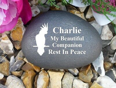 Pet Cockatoo Memorial Pebble - Stone Effect - Personalised - Weatherproof • EUR 14,56