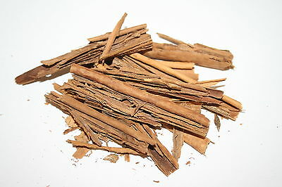 Ceylon Bark, 16g ~ Pollywog ~ Sri Lankan True Cinnamon ~ Shrimp Snail Tadpole