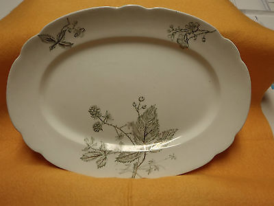 W.H Gringley Bramble Pattern English Ironstone Serving Platter