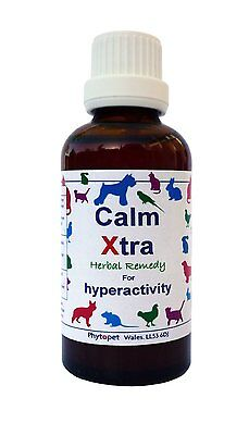 Phytopet Pet Calming Remedy Pet Anxiety Relief Calm Xtra 30ml