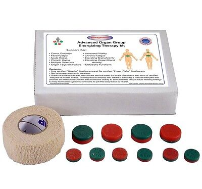 BiomagScience Organ Therapy Magnetic Energy Healing Liver Kidneys Brain Magnets