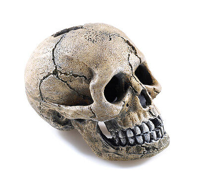 Spooky Human Skull Ornament Fish Tank Cave Aquarium Decoration