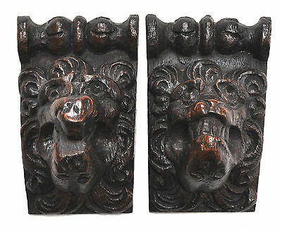 Pair of 17th century Flemish carved oak lions