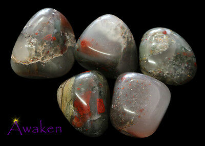 *ONE* SEFTONITE (African Bloodstone) Natural Tumbled Stone Approx 15-20mm *TRUST