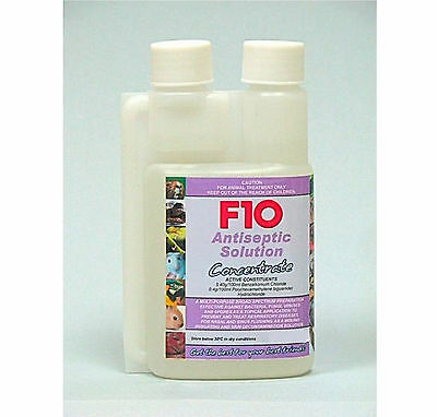 F10 Antiseptic Solution Concentrate 100Ml Pet Reptile Bird Wound Cleanser