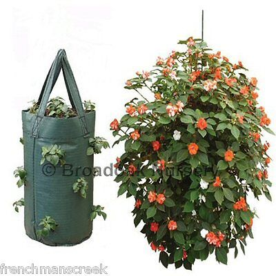 STRONG HANGING GROW BAG, Tomato, Flower, Herb, Strawberry Planter, UV Treated
