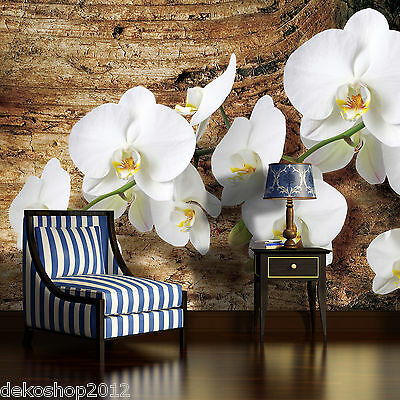 vlies fototapete fototapeten tapete tapeten wandbild orchidee auf brett 1017 ve eur 1 00. Black Bedroom Furniture Sets. Home Design Ideas