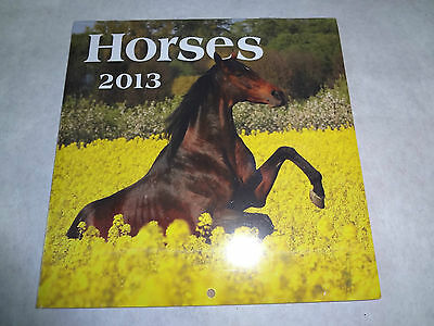 """NEW Collectible 2013 Calendar HORSES Stallion Mare Month at a Glance 6 x 6"""" CUTE"""