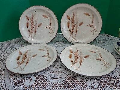 Stonehenge Midwinter Wild Oats England Set of 4 Dinner Plates 10 inches