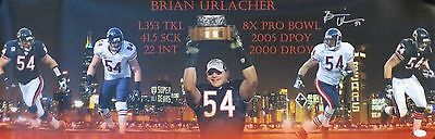 Brian Urlacher Autographed Chicago Bears Signed 12x36 Panoramic Photo JSA COA