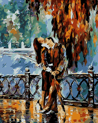 Acrylic Paint By Numbers Kit Canvas 50*40cm Kiss after the Rain 8198 S5 AU STOCK