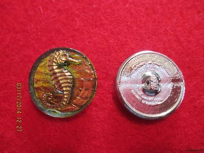 "Czech Glass Gold Seahorse on Greenish Background Mirrorback Button-.858""=21.80mm"