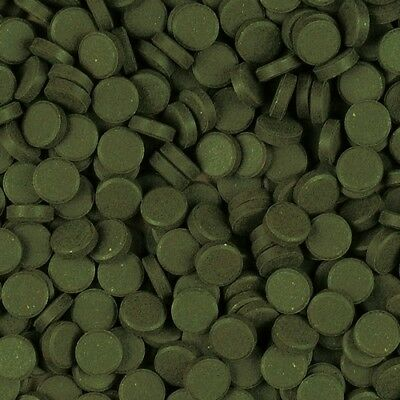 50 stick on glass spirulina food tablets,plecs,catfish,loach,snails,fish food