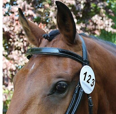 Equetech Bridle Competition Numbers BNH White or Black Patent Colours