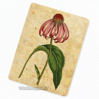 Purple Rudbeckia Deco Magnet, Decorative Fridge Décor Coneflower Garden Flower