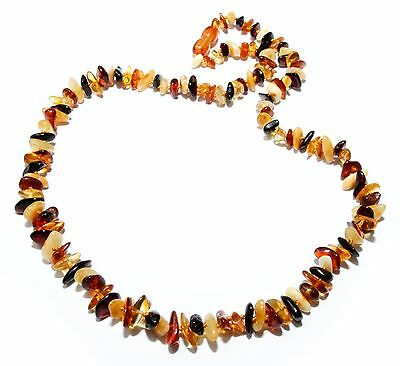 Genuine Baltic Amber Necklace for Adult Mixed 53 - 55 cm