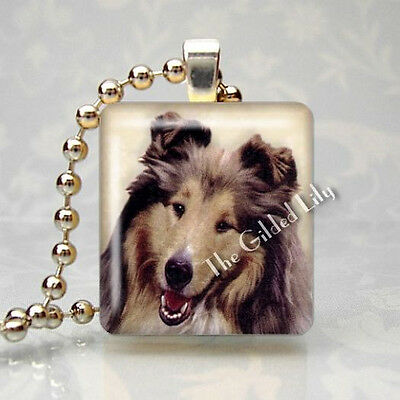 COLLIE DOG BREED Scrabble Tile Altered Art Pendant Jewelry Charm