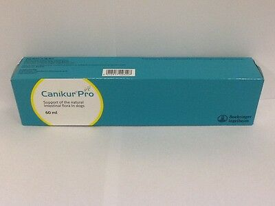Canikur Pro Paste 60ml, Premium Service, Fast Dispatch
