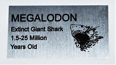 MEGALODON Tooth Fossil Extinct Shark Metal Display Label