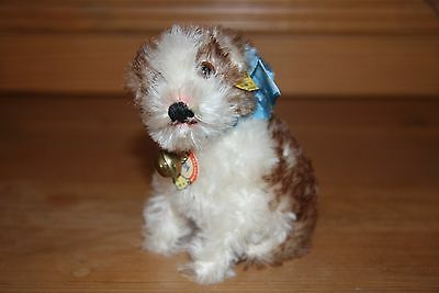 older Steiff dog Molly with silver button and tag 3310,00, very good