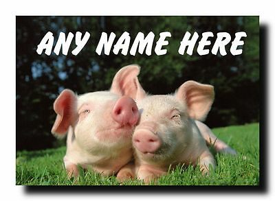 Cuddly Pigs Personalised Jumbo Magnet