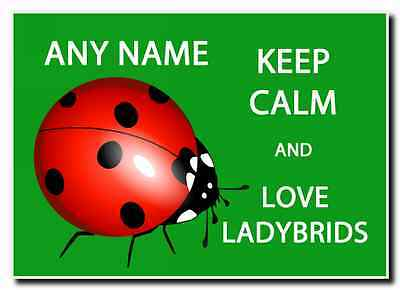 Keep Calm And Love Ladybirds Green Personalised Jumbo Magnet