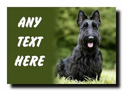 Scottish Terrier Dog Personalised Jumbo Magnet