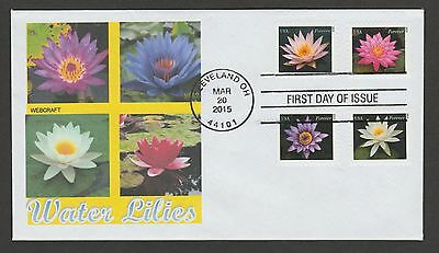 4964-67 * Water Lilies *